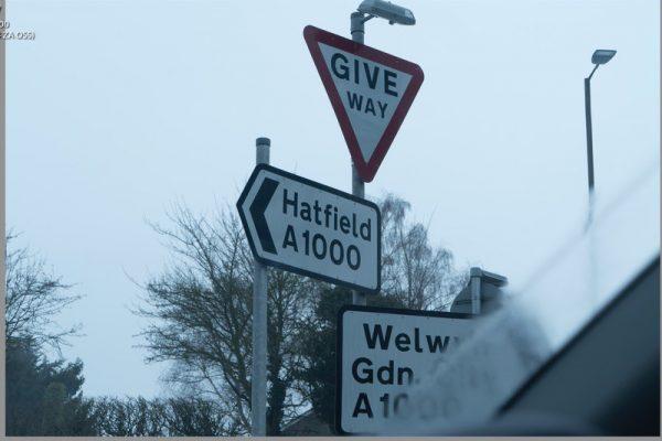 hatfield-0